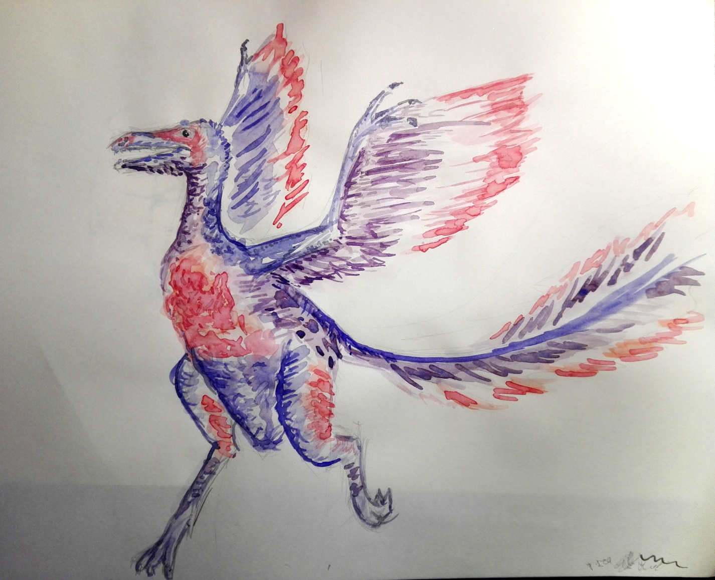 """Inktober 2: """"Binosaur"""", Aquarellzeichnung eines gefederten Dinosauriers in den Bi-Farben"""